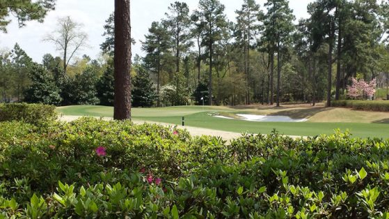 Golf Course home lot
