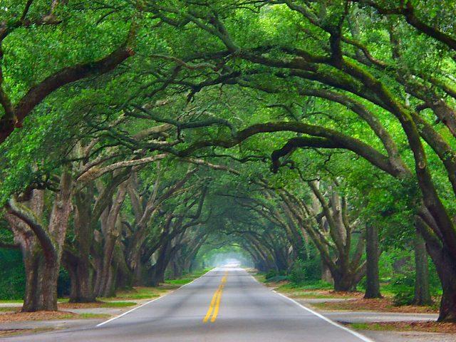 boundary oaks aiken
