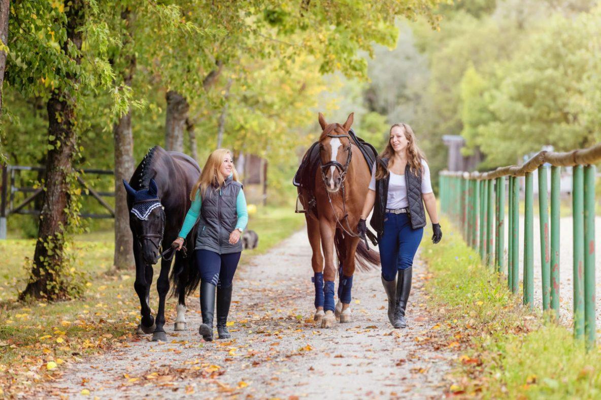 Anderson Farms, an equestrian community in Aiken SC